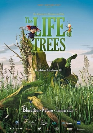 Kino Sferyczne - Tajemnice drzew