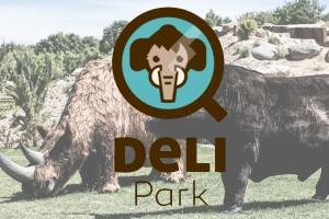Wstęp do DELI Park