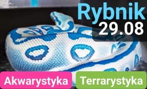 Godz: 12:00 Giełda Akwarystyczno Terrarystyczna w Rybniku Niedziela (wejście TARAS)