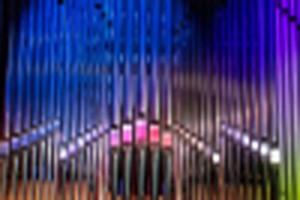Koncert organowy - 14.11.2021