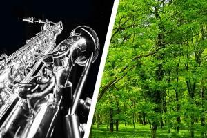 TYLKO VIVALDI, koncert, Filharmonia, ul. Podleśna 2