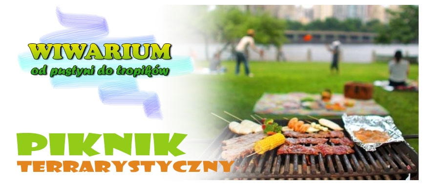 Inne - Piknik pasjonatów roślin i zwierząt egzotycznych - WIWARIUM
