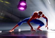 Bilety na: SPIDER-MAN UNIWERSUM