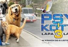 Bilety na: Psy i koty 3: Łapa w łapę