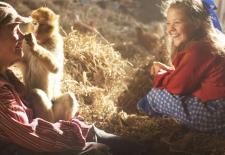 Bilety na: Małpia afera