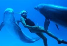Bilety na: Człowiek delfin (Mała sala)