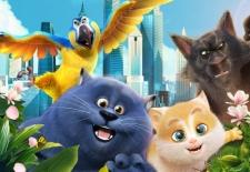 Bilety na: Sekretny świat kotów