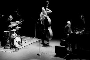 Australijskie trio The Necks w Polskim Radiu