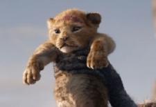 Bilety na: Król lew