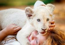 Bilety na: Mia i biały lew