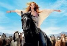 Bilety na: Wicher – dzikie konie
